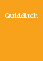 Quidditch Year Membership